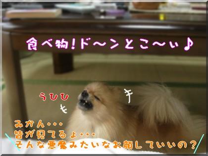 b0078073_0202636.jpg