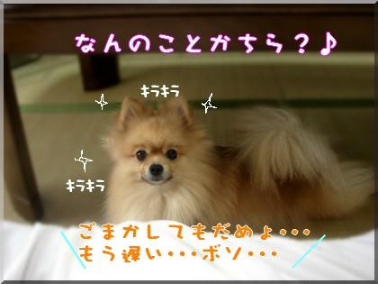 b0078073_020387.jpg