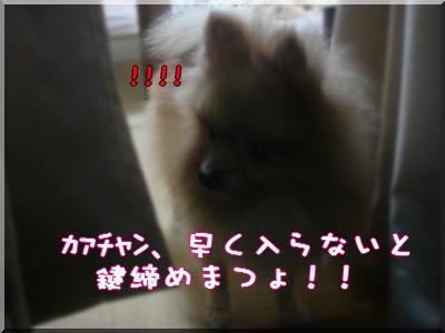 b0078073_0241937.jpg