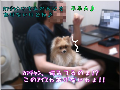 b0078073_22321262.jpg