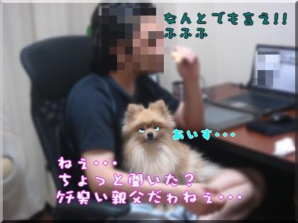 b0078073_22331463.jpg