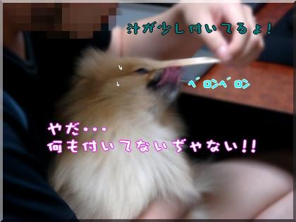 b0078073_22341844.jpg
