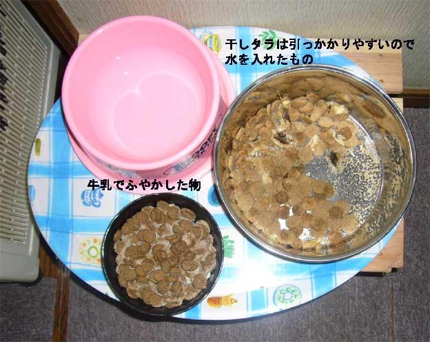 ご飯~      8月2日   水_e0018604_189969.jpg