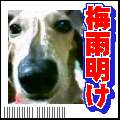 b0108053_2154434.jpg