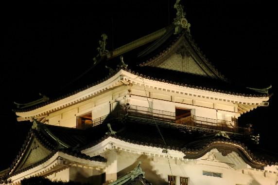 和歌山城 ライトアップ  6_b0093754_0244017.jpg