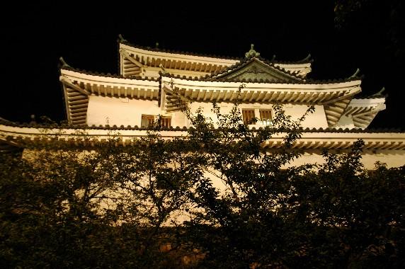和歌山城 ライトアップ  6_b0093754_0252423.jpg
