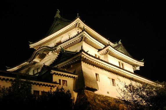 和歌山城 ライトアップ  6_b0093754_0253761.jpg