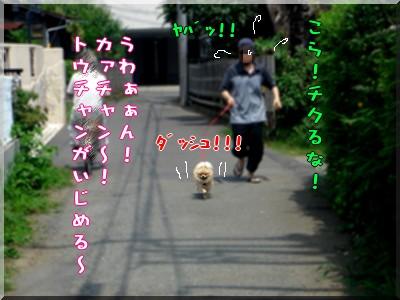 b0078073_23111821.jpg