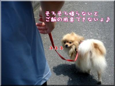 b0078073_23114779.jpg