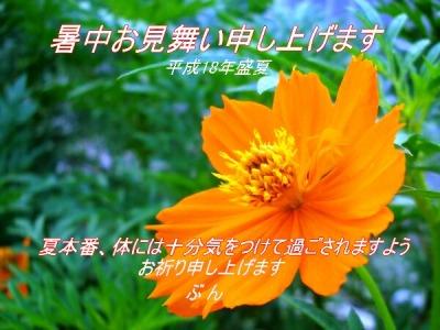 d0018704_1015731.jpg