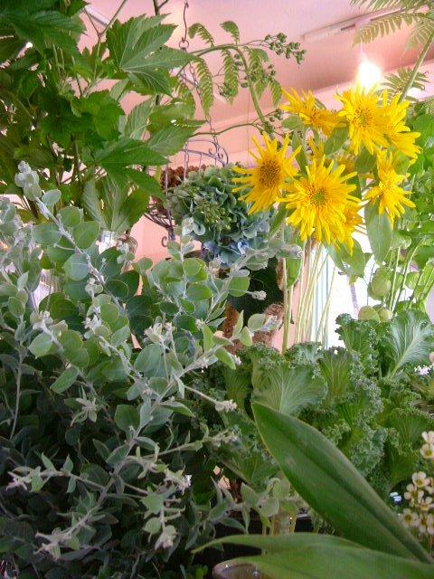 オークリーフ(緑の花)_f0049672_11595724.jpg