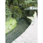 熊野神社 2006/8/4_c0052876_18505365.jpg