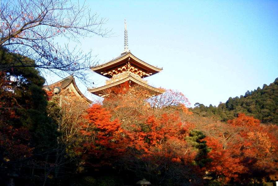 京都、清水寺の紅葉_d0077719_18544167.jpg