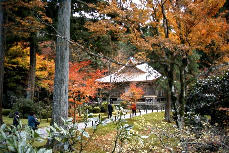 京都 法然院、三千院、天竜寺、東大寺_d0077719_194926.jpg