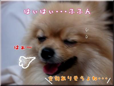 b0078073_1922274.jpg