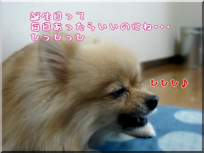 b0078073_19235644.jpg