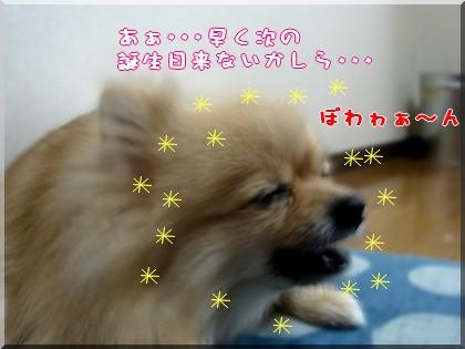 b0078073_19243950.jpg
