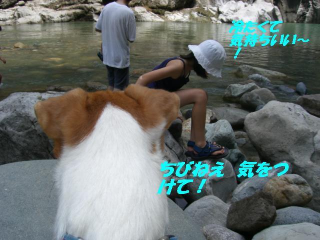 f0108553_20131827.jpg