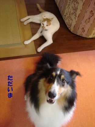 f0046854_2012513.jpg