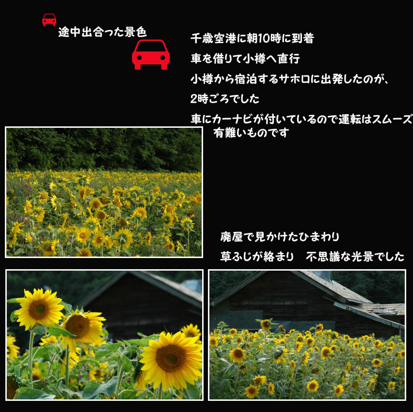 a0073275_1671520.jpg