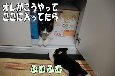 b0041182_1847353.jpg