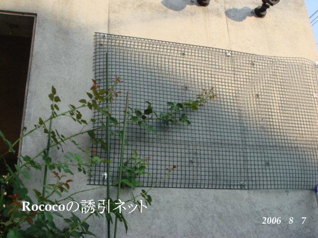 f0057006_154692.jpg