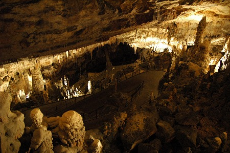 ポストイナ鍾乳洞 (Postojna Cave)_e0076932_7432764.jpg
