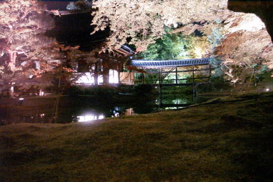 京都、清水寺の紅葉_d0077719_22505847.jpg