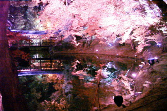 京都、清水寺の紅葉_d0077719_22511139.jpg