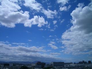 b0069630_2012568.jpg