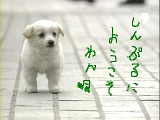 f0073639_035775.jpg