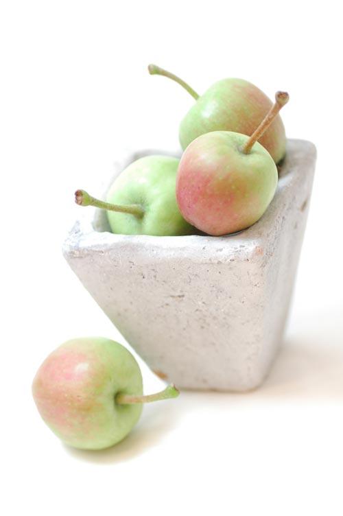 リンゴ りんご ミニ