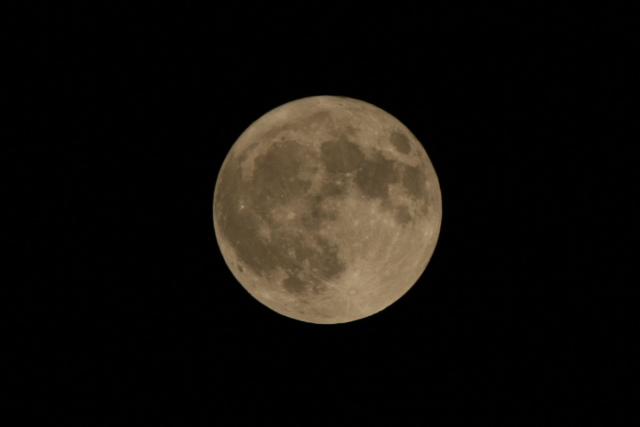 満月の夜・何かが起きる?_f0037633_22593875.jpg