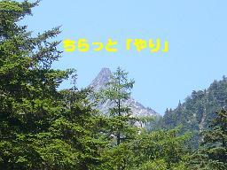 f0065941_09527.jpg