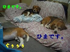 b0098660_13273268.jpg
