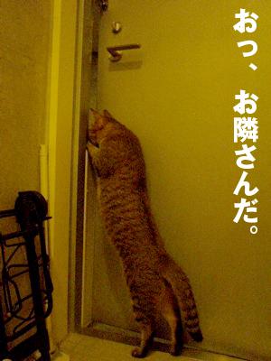 b0080632_0223594.jpg