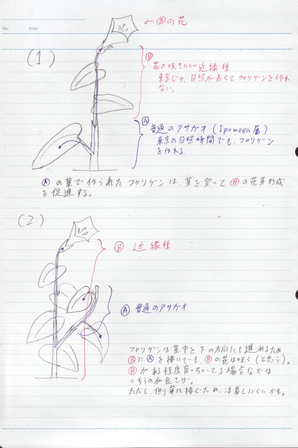 b0029648_1125290.jpg