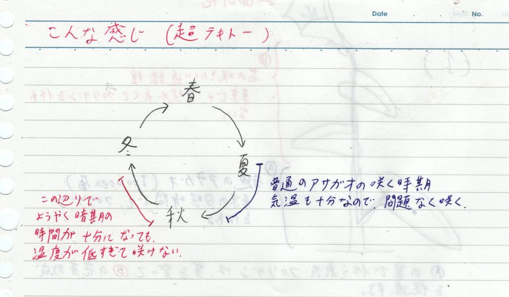 b0029648_113125.jpg