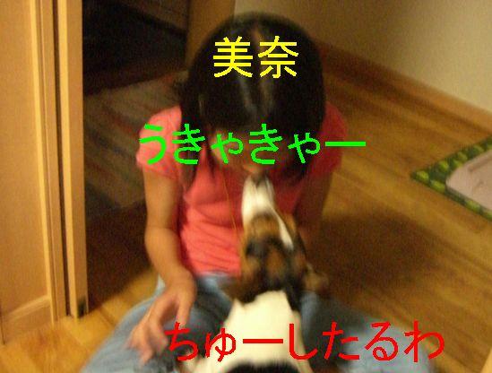 f0053952_17585566.jpg