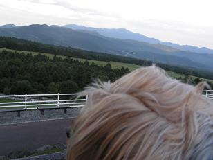 f0067361_153427.jpg