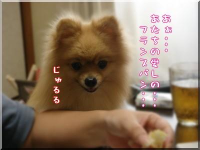 b0078073_2227202.jpg