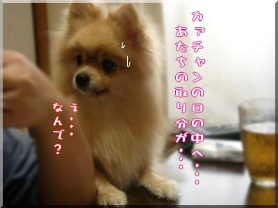 b0078073_22282367.jpg