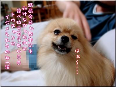 b0078073_22293531.jpg