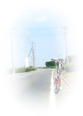 f0056698_1640360.jpg