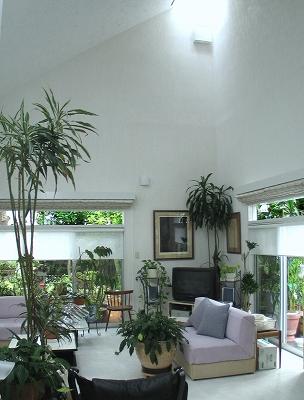 緑に囲まれた美しい暮らし・・・・植物を楽しむ窓_e0010418_8574919.jpg