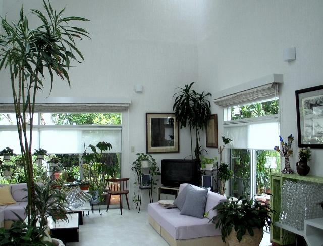 緑に囲まれた美しい暮らし・・・・植物を楽しむ窓_e0010418_8581180.jpg