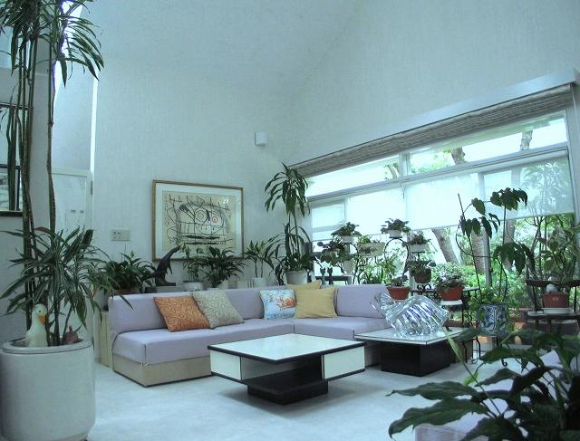 緑に囲まれた美しい暮らし・・・・植物を楽しむ窓_e0010418_8583677.jpg