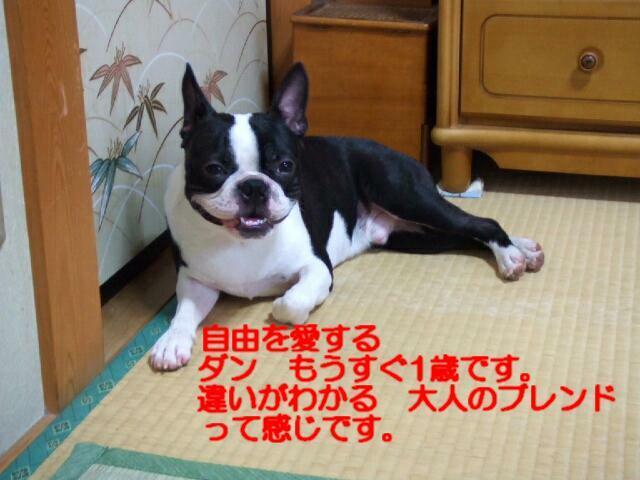 f0059334_9114618.jpg