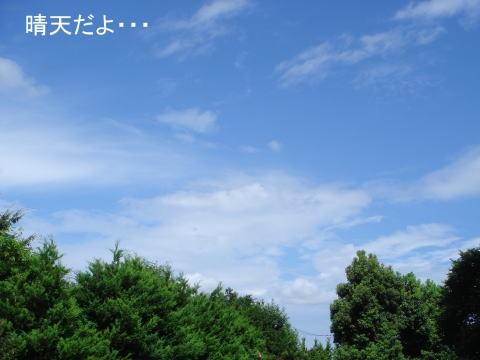 f0087044_1826787.jpg
