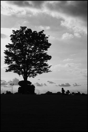 夏の空を探しに_f0100215_05937.jpg